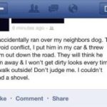 Facebook game talks about running over neighbor's dog