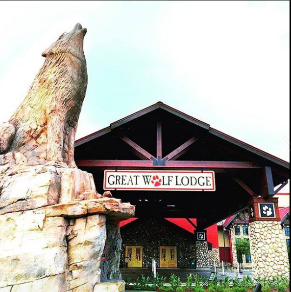 Ways To Save Money On a Trip to Great Wolf Lodge