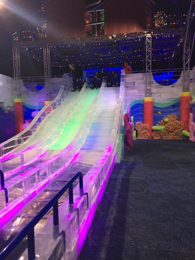 experience of a lifetime at moody gardens ice land 2016 according 2 mandy