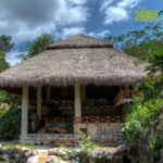 Review: Xenotes Oasis Maya Excursion in Cancun, Mexico For a Time You Will Never Forget